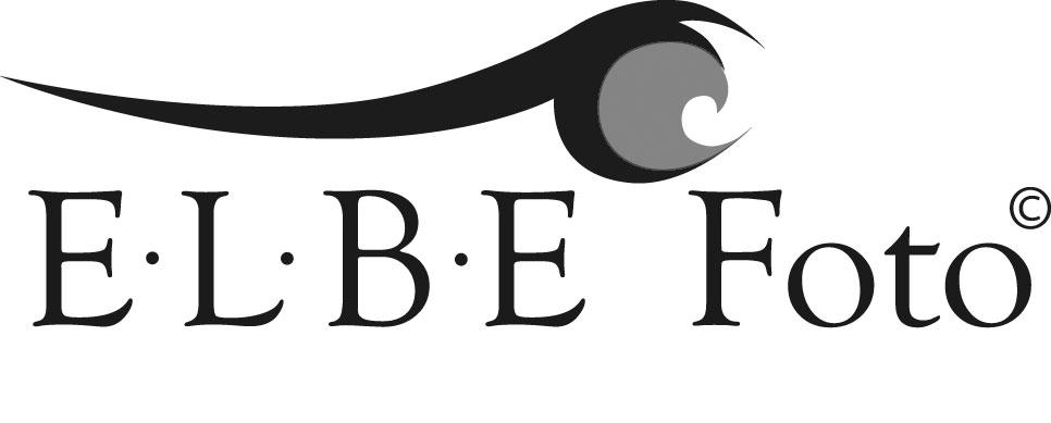 end_logo_elbefoto_4c_72dpi_schwarz